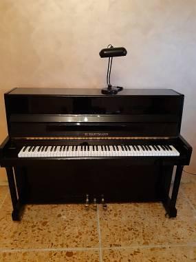 pianoforte verticale hartmann