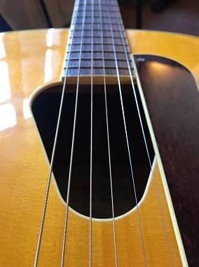 Gretsch Guitars G3203 hawaiian historic