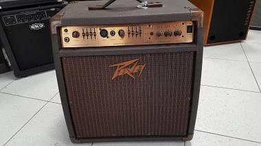Peavey Ecoustic 110 efx 75W - Made in USA
