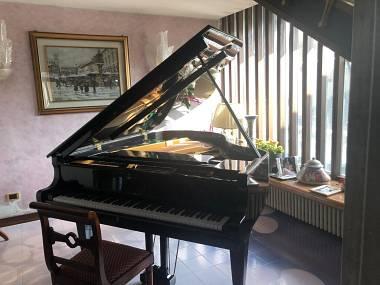 Vendo pianoforte a coda Astor
