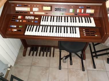 Technics E66 Organo o scambio con synth